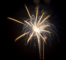 2013-Fireworks Floral 221x203